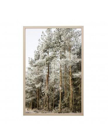 plakat las w ramce